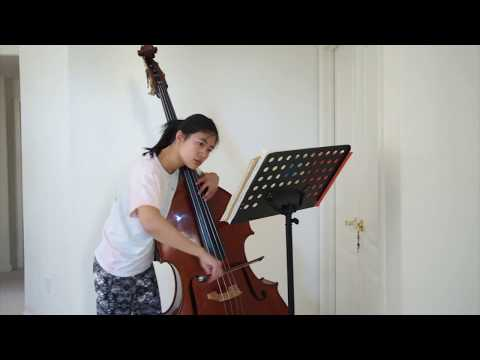 Double Bass Recording