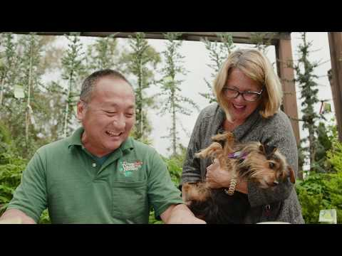 Professional Landscape Designer Jerry Wang On Why He Loves Garden Designs