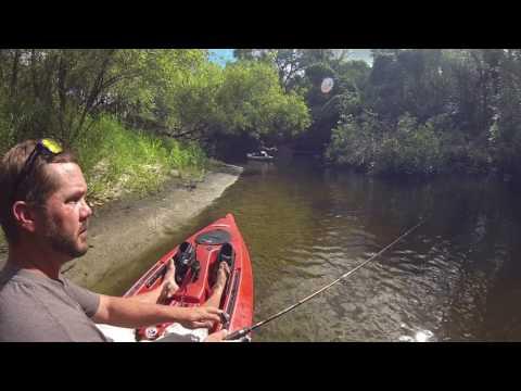 Manatee River , FL