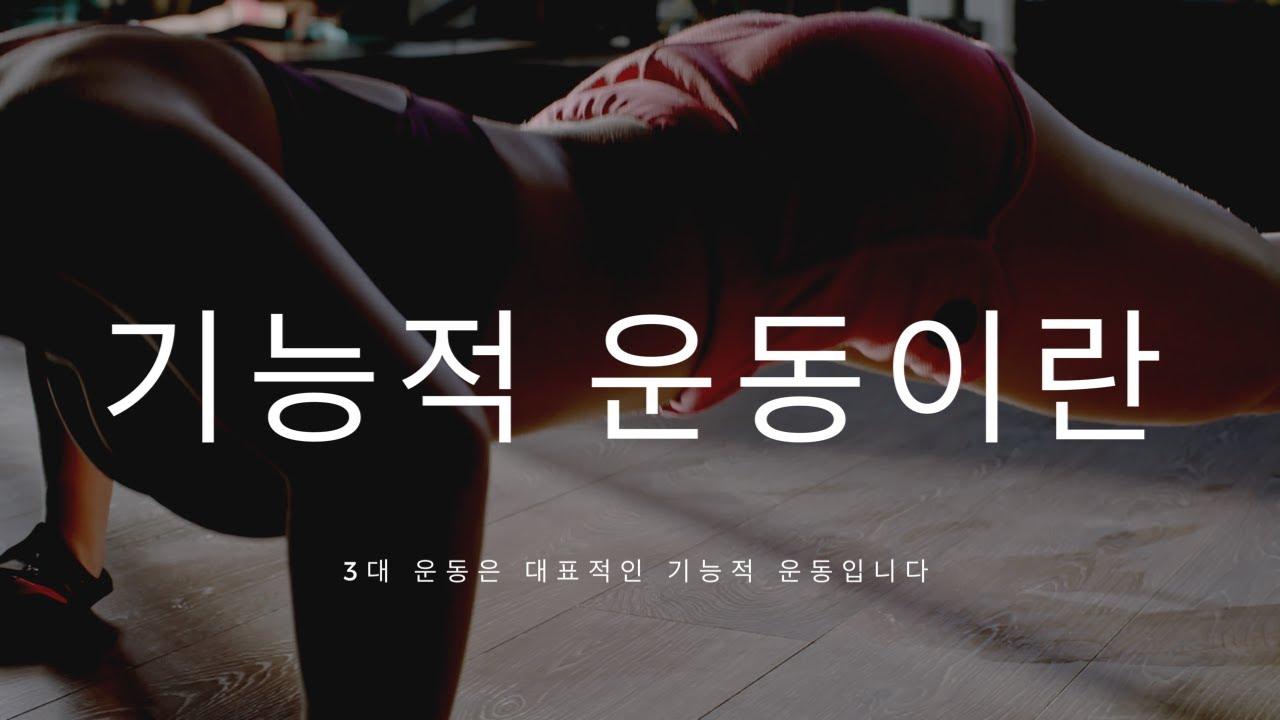 3대 운동과 기능적 운동. 기능적트레이닝 / 펑셔널 트레이닝 이란? by 물리치료사, 근력 및 컨디셔닝