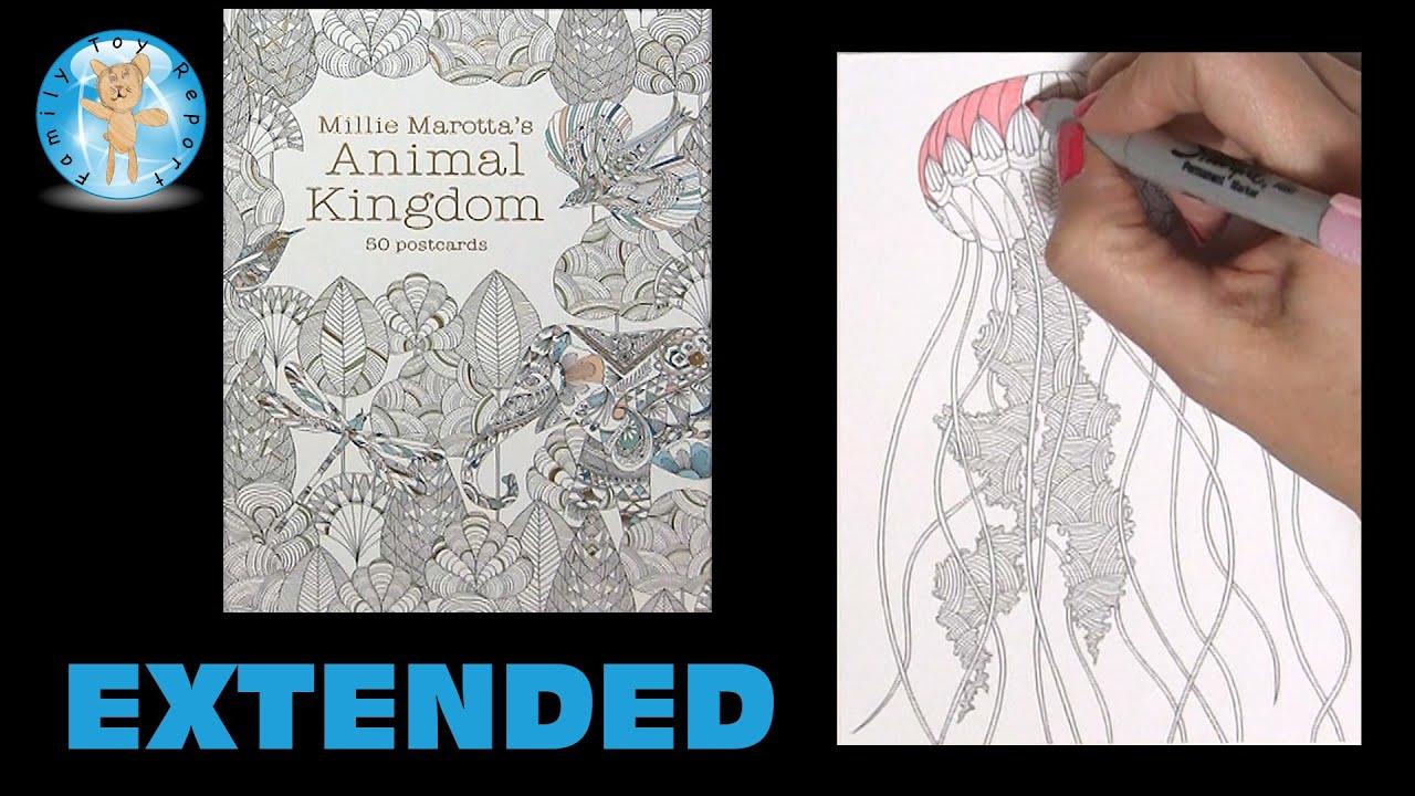 Millie Marottas Animal Kingdom Postcards Adult Coloring Book