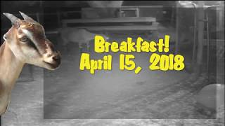 Breakfast! - April 15, 2018
