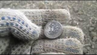 поиск золота в краснодарском крае ( находки просто радуют 50 копеек николаевские серебро )(группа в контакте https://vk.com/club109908715., 2016-04-11T22:24:20.000Z)
