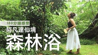Publication Date: 2018-08-29 | Video Title: 【探索當地人 | #深度遊】遇上阿凡達仙境?