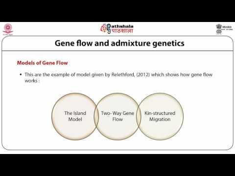 Gene flow and admixture genetics(ANT)