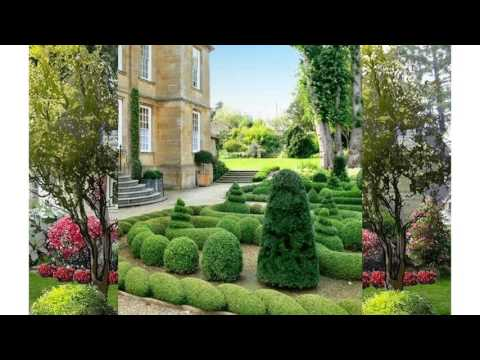 Petit jardin de maison