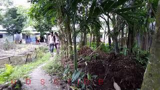 ভিডিওটি দেখে হাসতে হাসতে পেটে ভেতা হয়ে যাবে। Bangla best funny video 2018