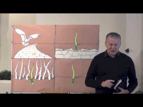 Children's Bible Talk - The Parable of the Sower