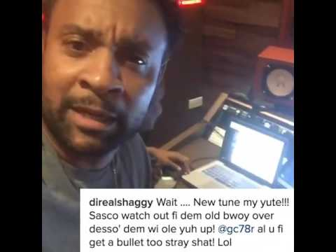 Assassin aka Agent Sasco Vs Shaggy - Instagram Clash!