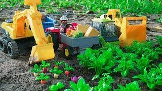 Farm Animals and Excavator, Dump Truck & Wheel Loader Toys Story