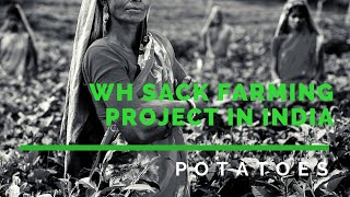 WorldHarvest Sack Farming Project in India