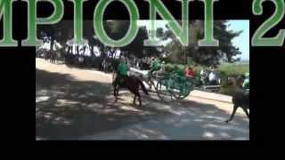 Repeat youtube video corsa dei carri Chieuti 2014