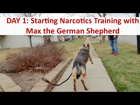Day 1 Drug Detection Dog Training with Terry Cook: Columbus Ohio Narcotics K9 Training
