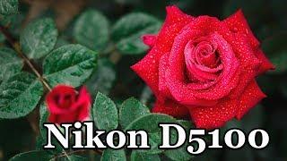 Фотообзор NIKON D5100 Цветы.  Примеры фото.