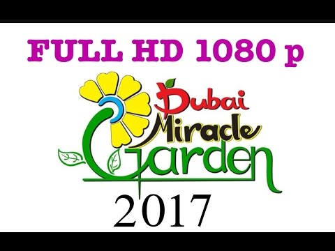 DUBAI MIRACLE GARDEN 2017 FULL HD 1080P
