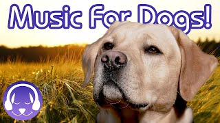 How to Help My Dog Sleep! Calming Music to Soothe Your Dog!