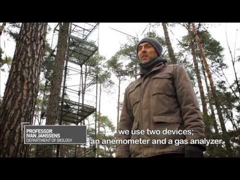 BEHIND THE SCIENCE: Renewable energy (National Geographic) (