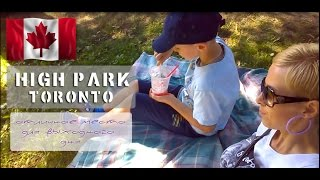 Семейное место в Торонто High Park | БЕСПЛАТНЫЙ зоопарк | Белки-собаки | RomashKA