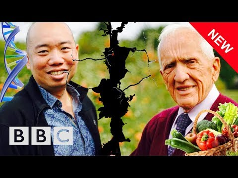 FAT GENES vs PLANT BASED DIET w/ Dr. Giles Yeo & Dr. T. Colin Campbell