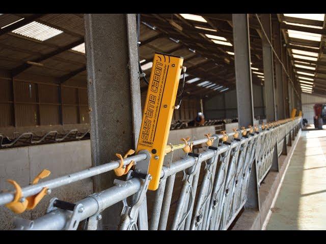 Cosnet élevage - Système d'ouverture et de fermeture automatique de cornadis