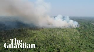 Large swathes of the Amazon rainforest are burning