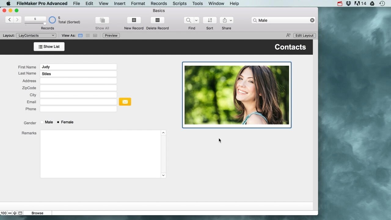 Filemaker Pro Courses filemaker pro basics for beginners