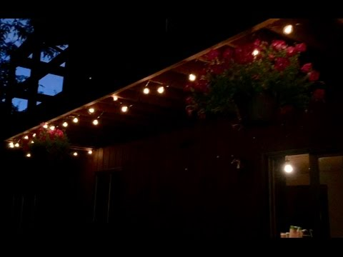 50' G40 Globe String Lights with Bulbs-UL for Indoor/Outdoor Commercial Decor