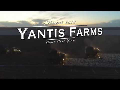 Yantis Farms - Harvest 2018