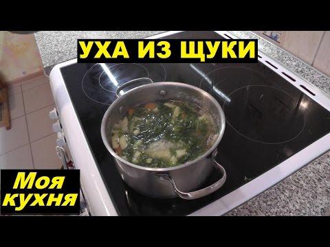 приготовление щуки рецепты пошагово