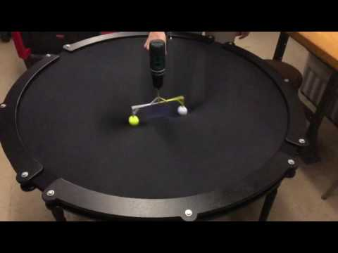 Pulsars and gravity waves science demo