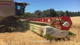 Claas 770 & 1350 Australian Harvest 2016