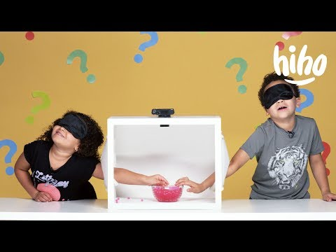 Kids Guess What's in the Box! | Episode 1 | HiHo Kids