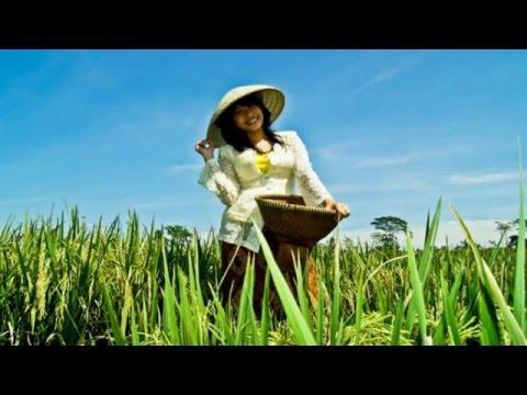 Lagu Romantis - Sunda - Tembang Cinta | Doel Sumbang