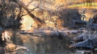 GIOVANNI MARRADI - Winter Breeze