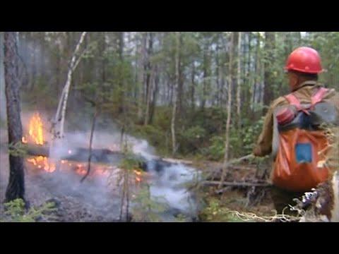 שריפות הענק בסיביר: עשן כבד על ערי רוסיה