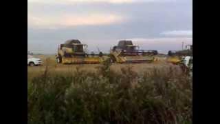 Żniwa 2013 --- TOP FARMS --- 30tyś/ha.