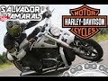 Harley-davidson V-Rod Muscle Acelerando