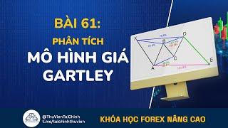 Bài 61: Mô Hình Gartley Trong Giao Dịch Forex | Đầu Tư Forex Nâng Cao | Học Forex Online | Bitcoin