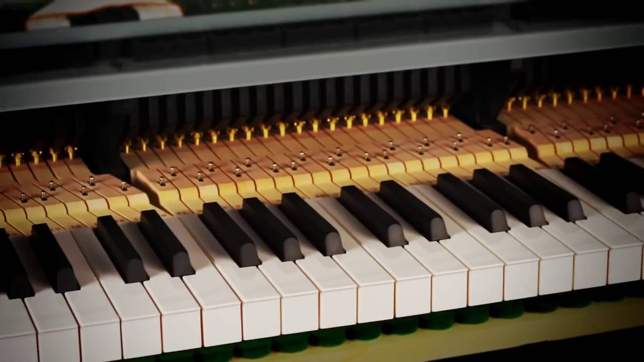 Casio Bechstein Grand Hybrid Digital Piano - Action - YouTube