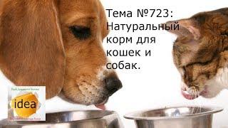 Натуральный корм для кошек и собак