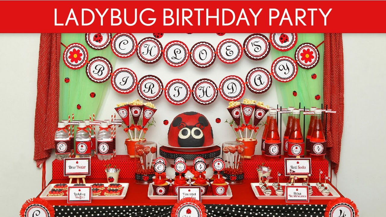 Ladybug Birthday Party Ideas Ladybug B35 Youtube