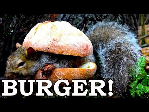 Squirrel BURGERS in the FOREST (Savage)! | Caveman Food Over Open Fire