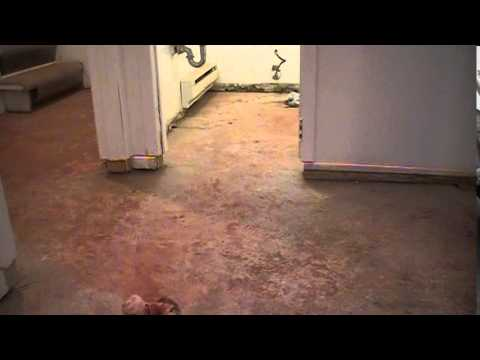 Crooked And Wavy Basement Floor Leveling With Dry Pack For Perfect Tight  Joint Tile Installation