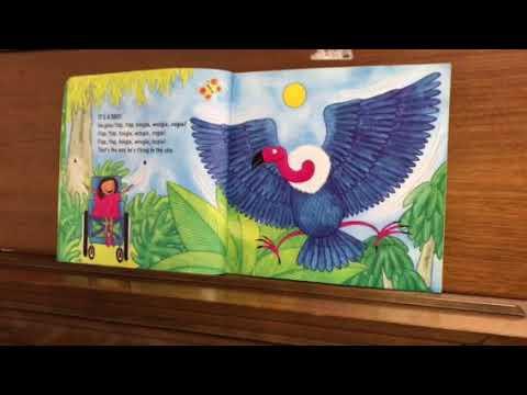 Animal boogie book
