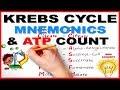 Krebs cycle / Citric acid cycle / TCA cycle & ATP count   Mnemonic series # 9