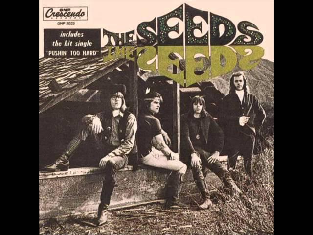 the-seeds-cant-seem-to-make-you-mine-raszew997