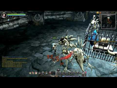 Dragon nest | Charter Ship | Sunken Cargo Vessel