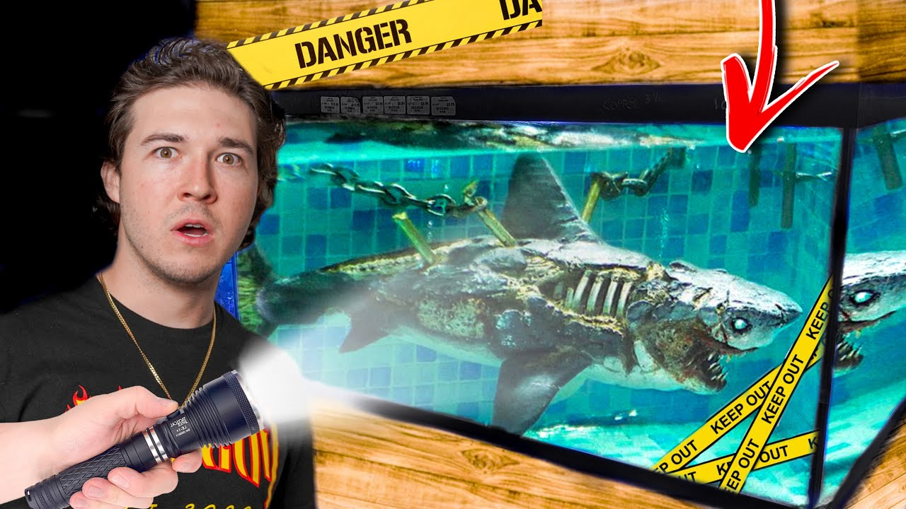 Download This DEADLY FISH Should NOT BE SOLD ON THE INTERNET... (so we bought it)
