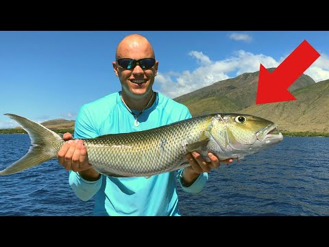 First Time Making SUSHI!! Catch N' Raw Hawaii Fish