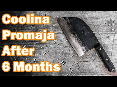 TRUTH of Serbian Chef Knife After 6 Months